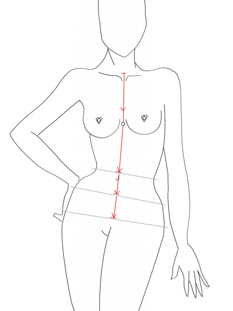 Torso---Front-Neck-to-Hip-line
