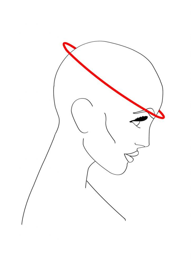 head-brow