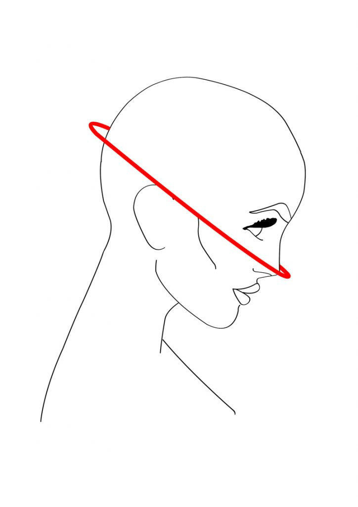 head-nose